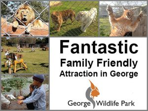 Fantastic Family Friendly Attraction in George