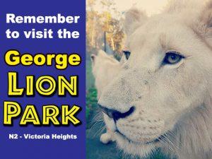 Visit the George Lion Park