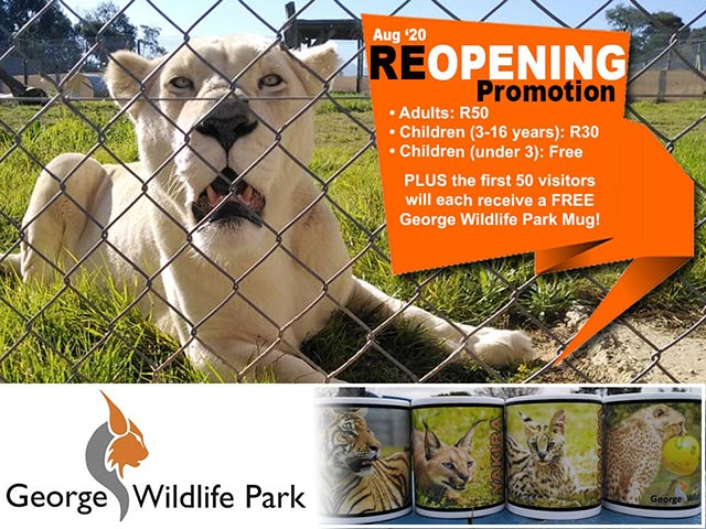 George Wildlife Park Reopening Promotion