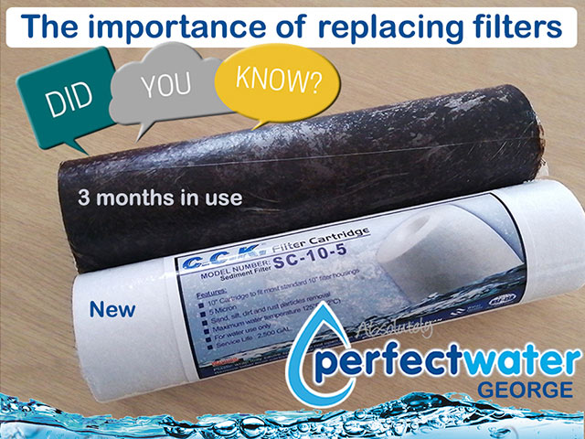 The Importance of Replacing Water Purifier Filters