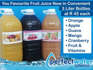 Fruit Juice in Convenient 3 Liter Bottles in George