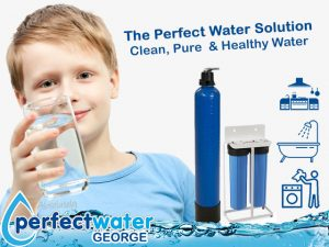 George Home and Business Water Purification